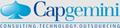 logo_Capgemini-grey